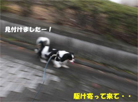 03_convert_20131210174214.jpg