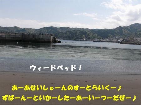04_convert_20130415172732.jpg