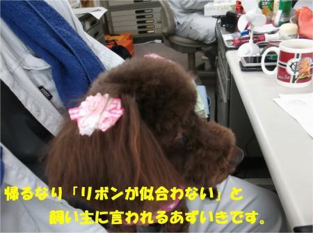 04_convert_20130529160150.jpg