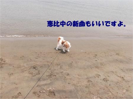 04_convert_20130610170206.jpg