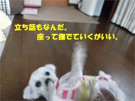 04_convert_20130612170955.jpg