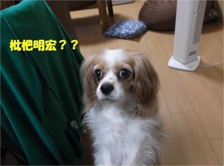 04_convert_20130619171209.jpg