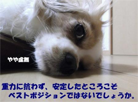 04_convert_20130628161604.jpg