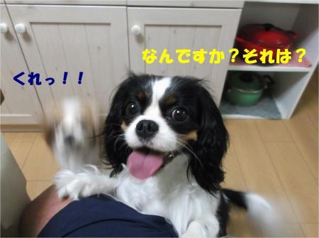04_convert_20130709172609.jpg