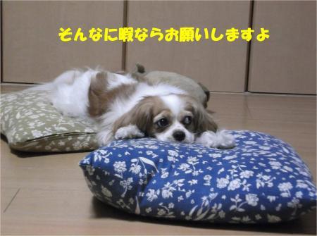 04_convert_20130731170905.jpg