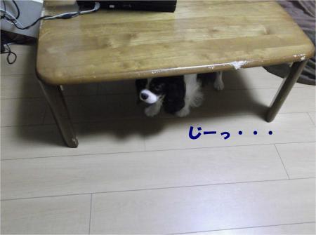04_convert_20130821173725.jpg