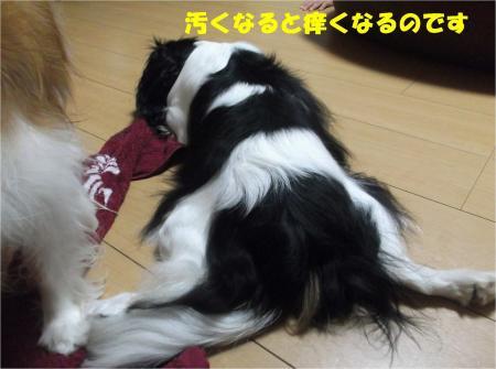 04_convert_20130823180811.jpg