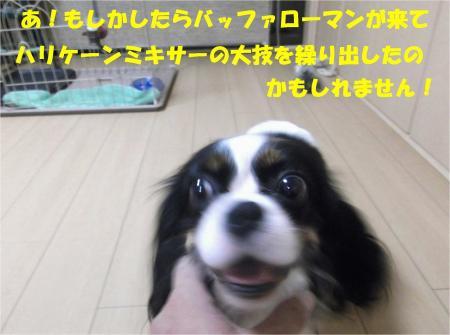 04_convert_20130903175156.jpg