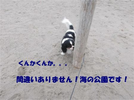 04_convert_20130907153948.jpg