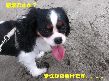 04_convert_20130917161420.jpg