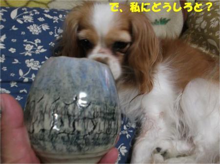 04_convert_20130919172154.jpg