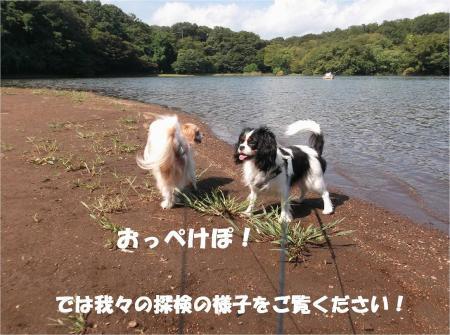 04_convert_20130923133338.jpg