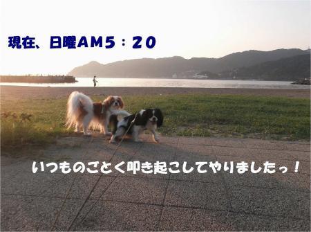 04_convert_20130925175233.jpg