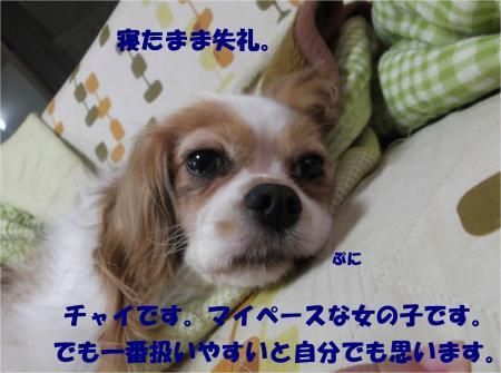 04_convert_20130927185445.jpg