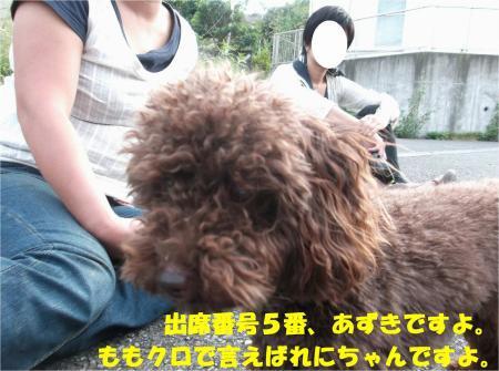 04_convert_20130930093350.jpg