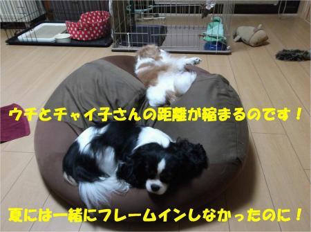 04_convert_20131008172758.jpg