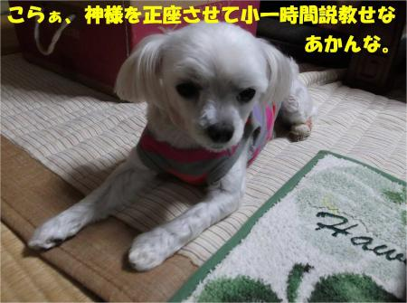 04_convert_20131010174157.jpg