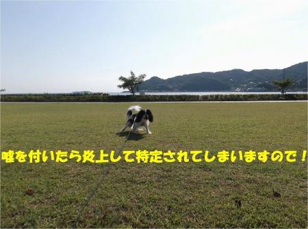 04_convert_20131015170801.jpg