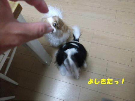 04_convert_20131023175806.jpg