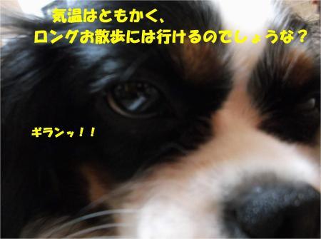 04_convert_20131025180004.jpg