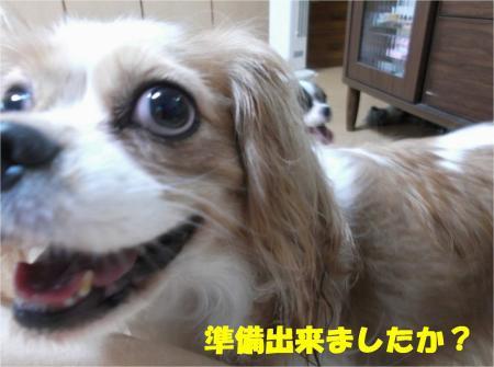 04_convert_20131026170859.jpg