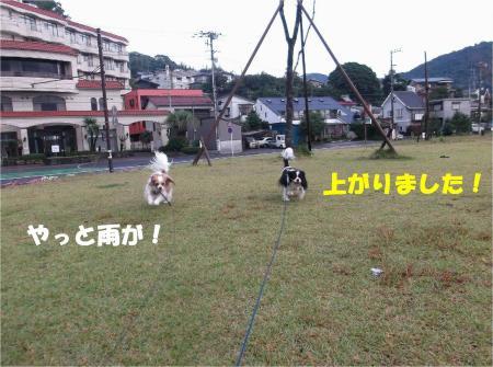 04_convert_20131028174225.jpg