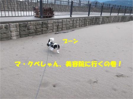 04_convert_20131029195858.jpg