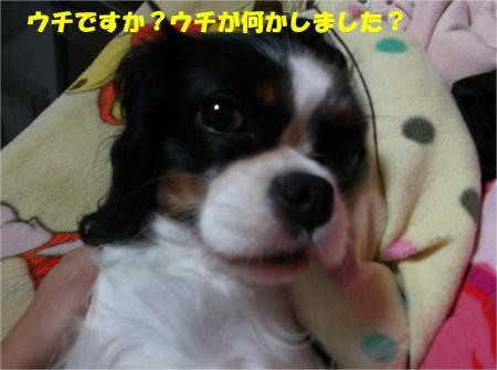 04_convert_20131031185814.jpg