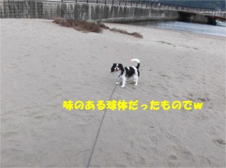 04_convert_20131204180149.jpg