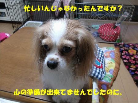 04_convert_20131209170603.jpg