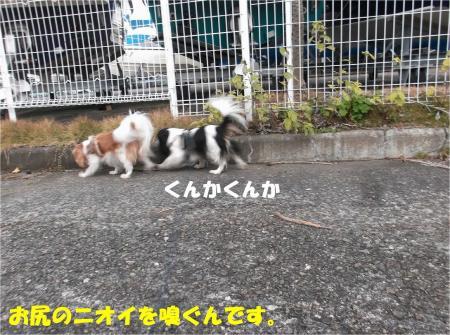 04_convert_20131210174225.jpg