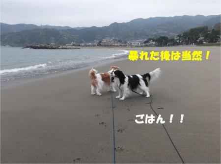 05_convert_20130401181630.jpg