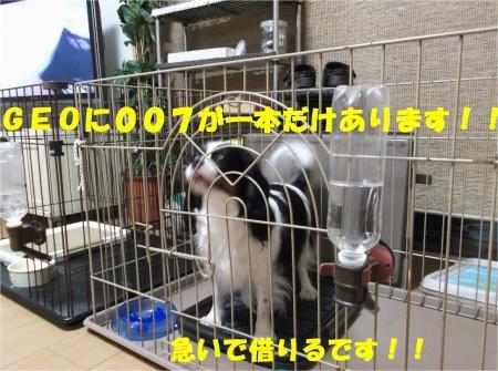 05_convert_20130405192558.jpg
