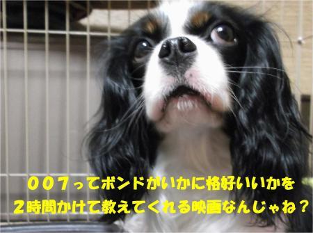 05_convert_20130409170600.jpg
