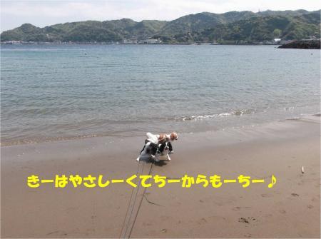 05_convert_20130415172742.jpg