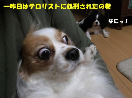 05_convert_20130416174138.jpg
