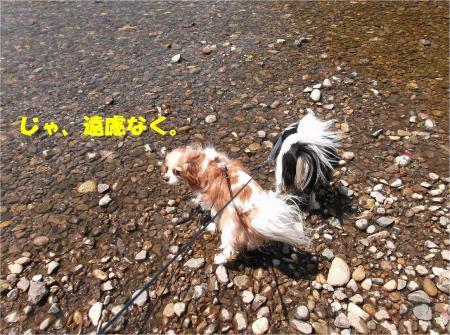 05_convert_20130430112528.jpg