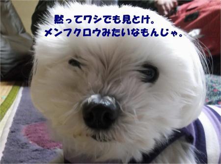 05_convert_20130510180929.jpg