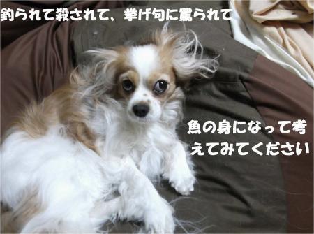 05_convert_20130528180521.jpg
