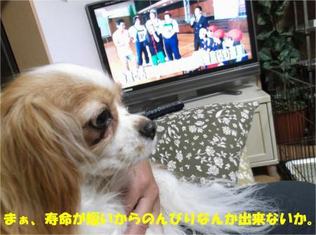 05_convert_20130613170357.jpg