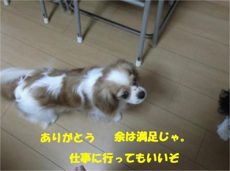05_convert_20130614180251.jpg