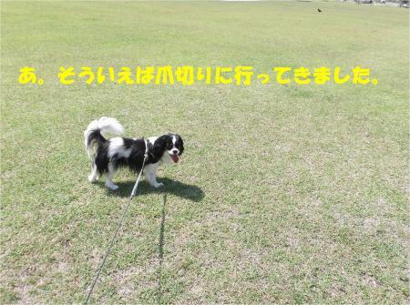 05_convert_20130624172139.jpg
