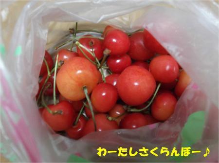 05_convert_20130625172642.jpg