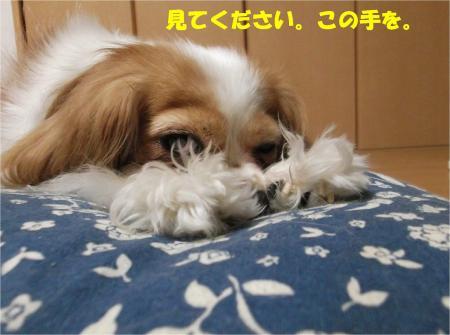 05_convert_20130731170916.jpg