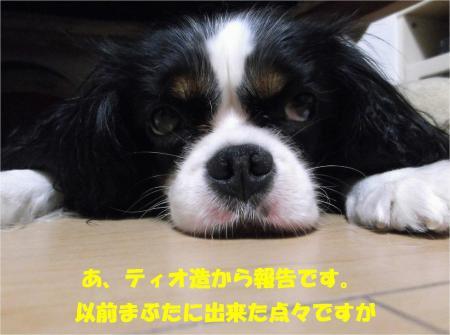 05_convert_20130806175750.jpg