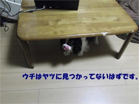 05_convert_20130821173736.jpg