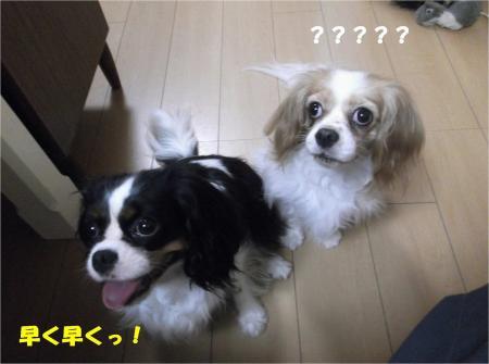 05_convert_20130830182012.jpg