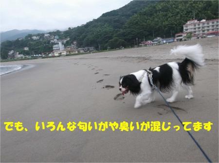05_convert_20130907153958.jpg