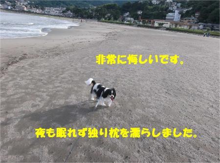 05_convert_20130917161449.jpg