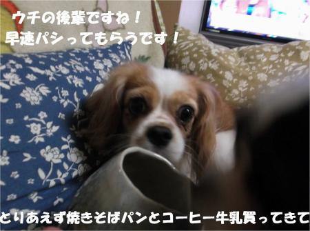 05_convert_20130919172205.jpg